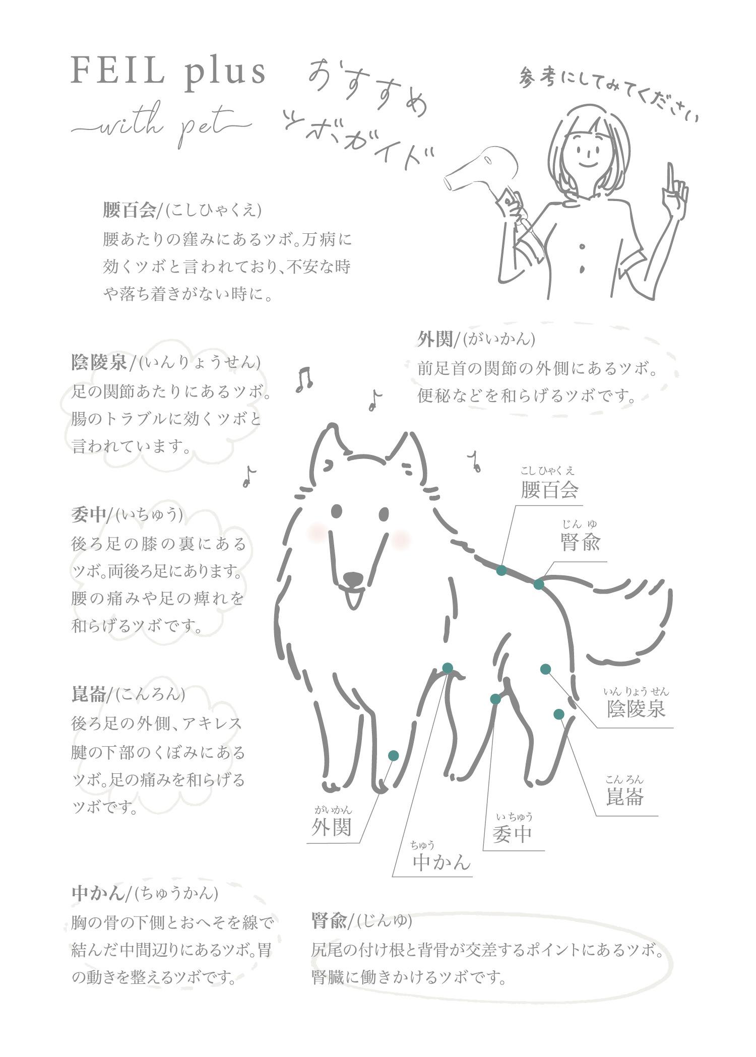 FEIL plus with pet おすすめツボガイド