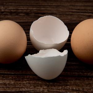 卵殻カルシウム